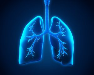 In-Home Care Millington TN - Can Lung Issues Have a Bigger Health Impact for Your Senior?